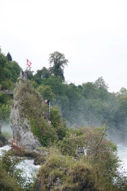 Rheinfall Felsen
